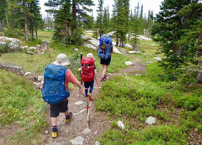 Backpacking with Kids Cover TN.jpg