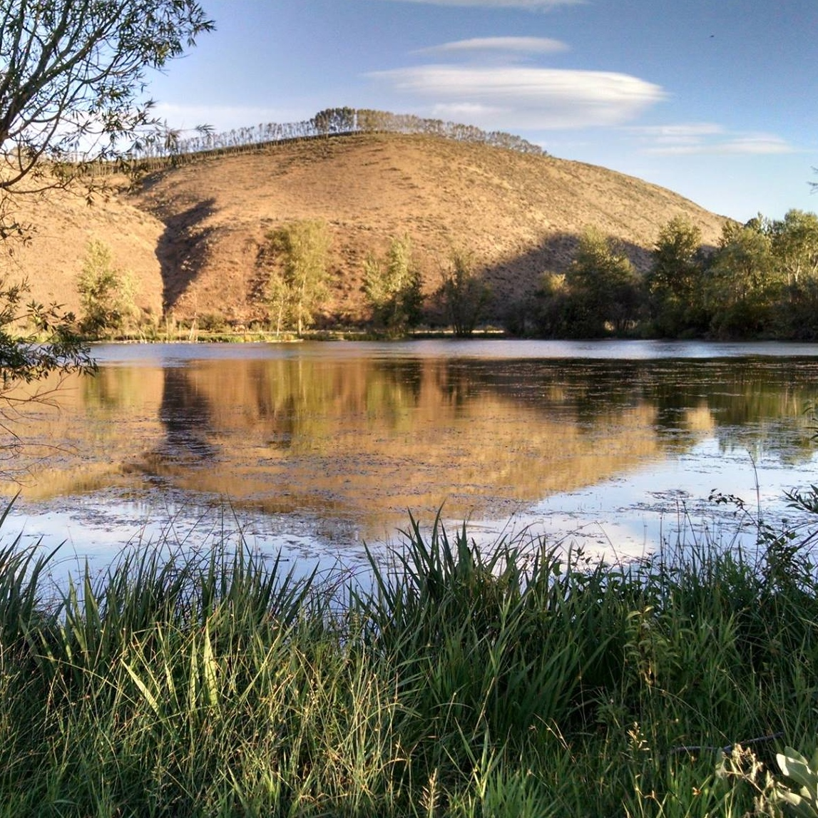 Helen McCabe Park - pond