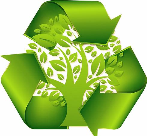 recycle-symbol-with-tree-vector-16308157_edited.jpg