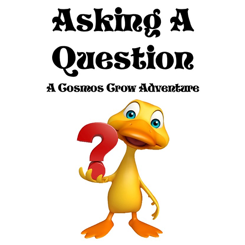 Asking a Question