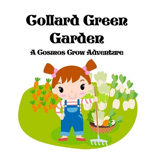 Collard Green Garden