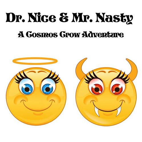 Dr. Nice & Mr. Nasty
