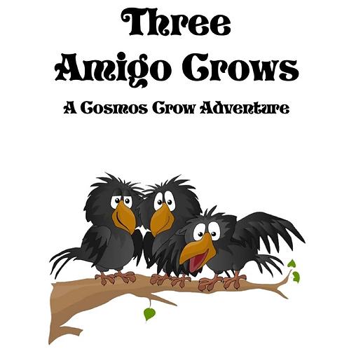 Three Amigo Crows