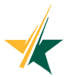 star icon yellow.png