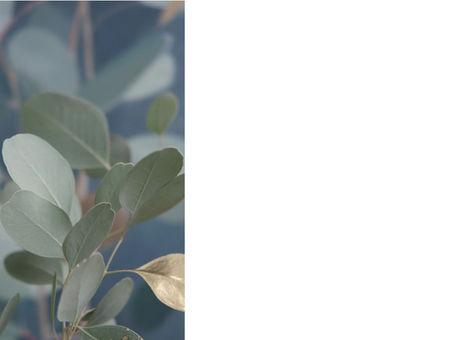 Eucalyptus   by Mishinsky for sale