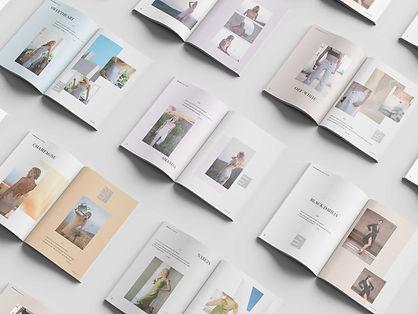 Tina-Dion-pages-mockup.jpg