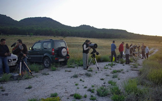 Observación del 4 de junio de 2011