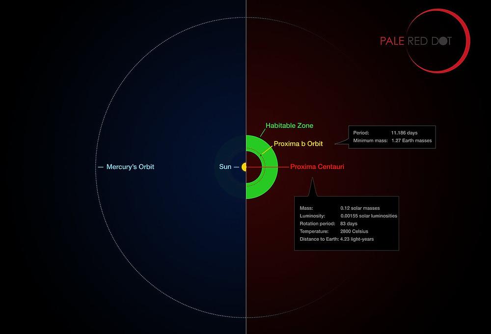 Próxima Centauri y su planeta comparados con el Sistema Solar. Crédito:ESO/M. Kornmesser/G. Coleman