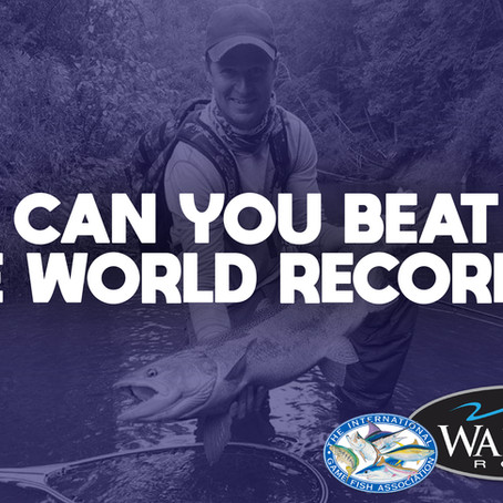 Can you beat these fly fishing world records?