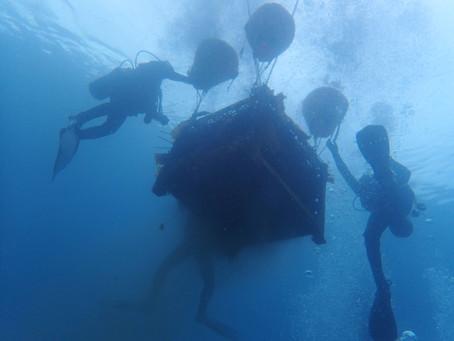 『海底ワイン2021』の予約申込期間を11月10日まで延長いたします。