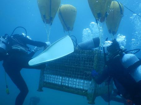 南伊豆の海底に眠る『海底ワイン2021』現在順調に熟成中です。