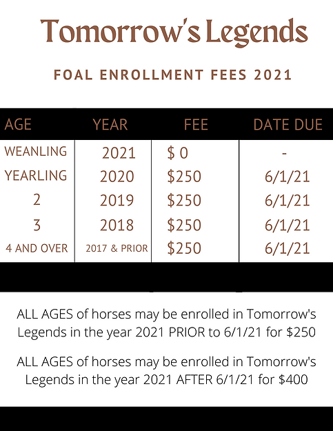 FEES 2021 CORRECT .png