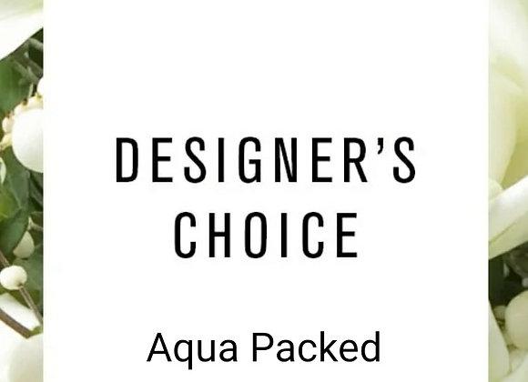 Florist Choice Aqua Packed