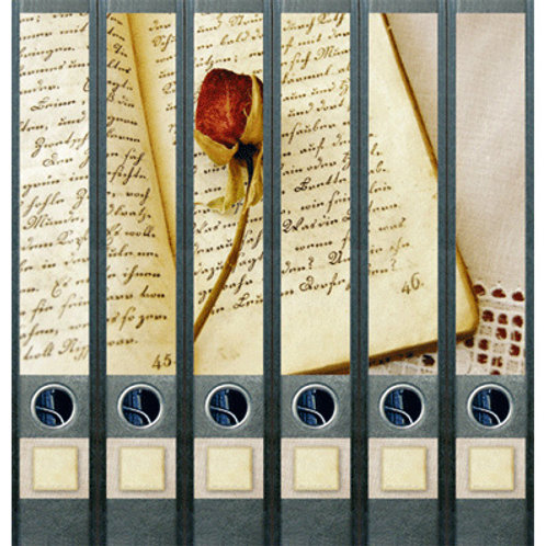 Panorama-Rücken »Buch & Rose«