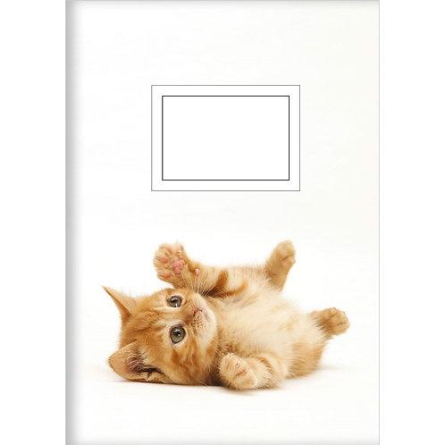 Kladde »Verspielte Katze« (A6)