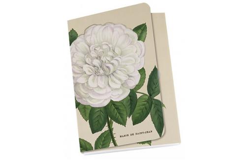 """Taschennotizblöckchen »Weiße """"Alte Gartenrose""""«"""