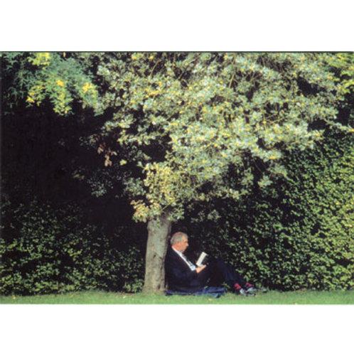Postkarte »Lesen im Park«
