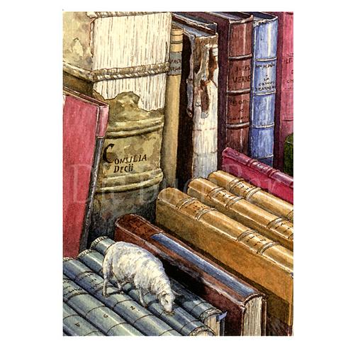 Kunstpostkarte »Pastral Books«