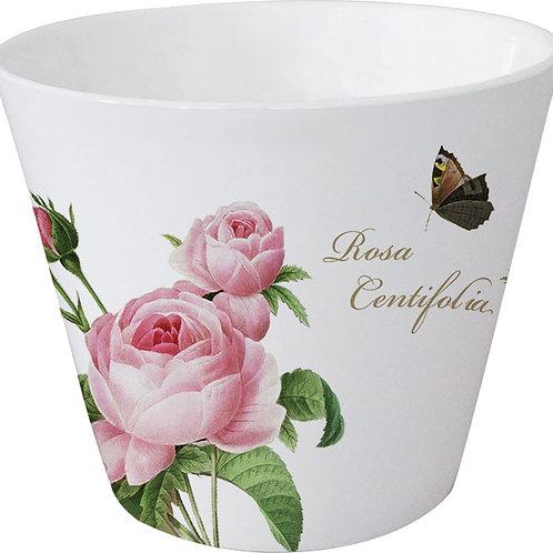 Becher-Licht »Rosa centifolia«