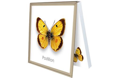 Klebezettel »Postillon«