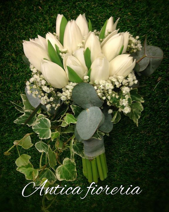 #bouquet #bouquetdasposa #tulipanibianchi #edera #semplicità    #cosebelle #matrimonio #felicità #fi