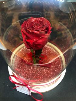 Campana con rosa eterna brillantinata
