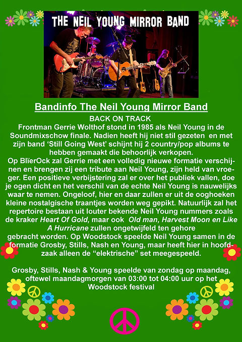 The Neil Young Mirror Band.jpg