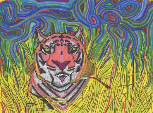 lurking tiger