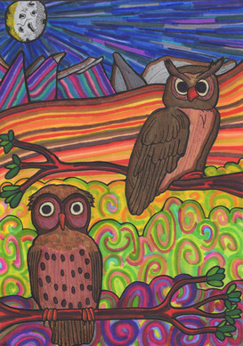 the pair of owls