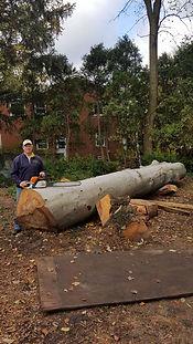 live edge wood slabs for sale, detroit, michigan