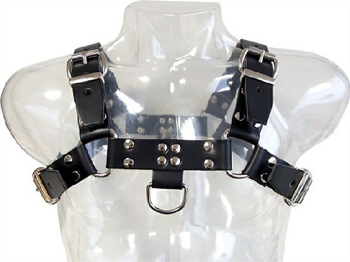 Chest - saddle Leather