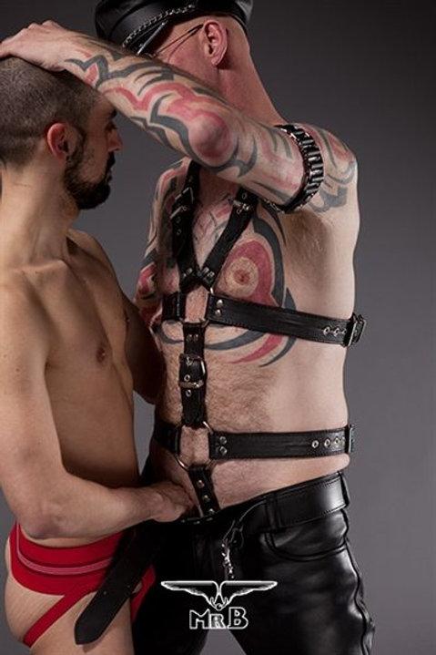 Leather Bear Full harness