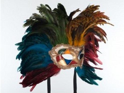 Multicolor Mardi Gras
