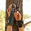 Thumbnail: Bondage Wrist Cuffs