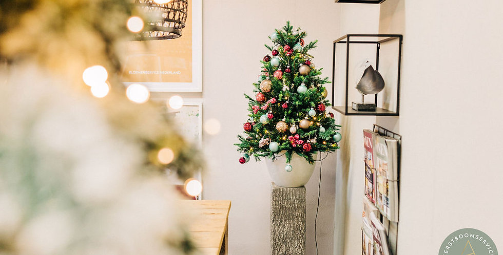Kerstboom in pot 110 cm