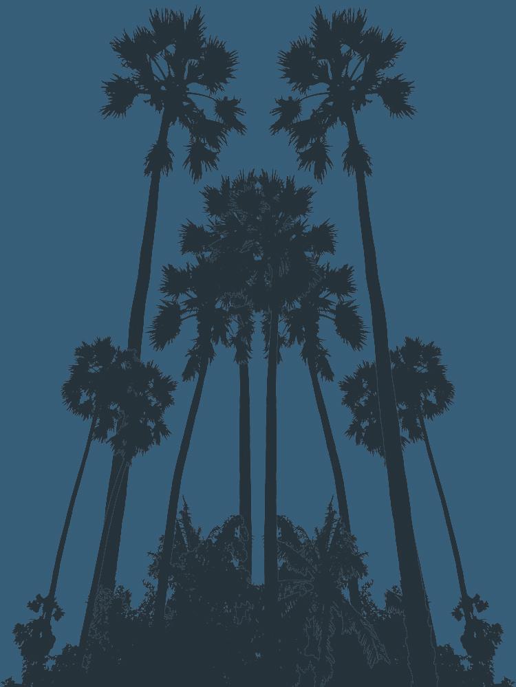 Palms_Graphic