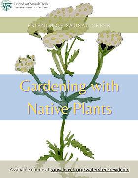 Draft 2 FOSC Native Plant booklet (onlin