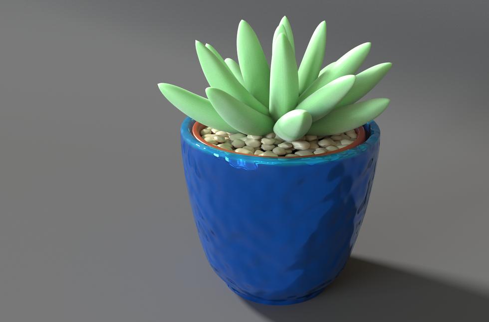 Succulent6.png