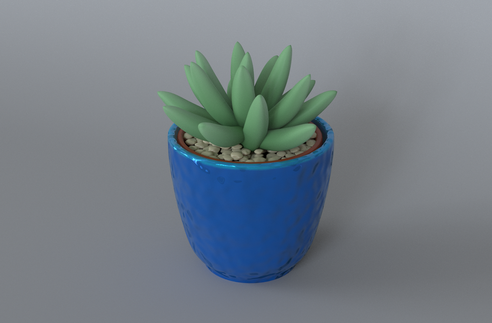 Succulent2.png