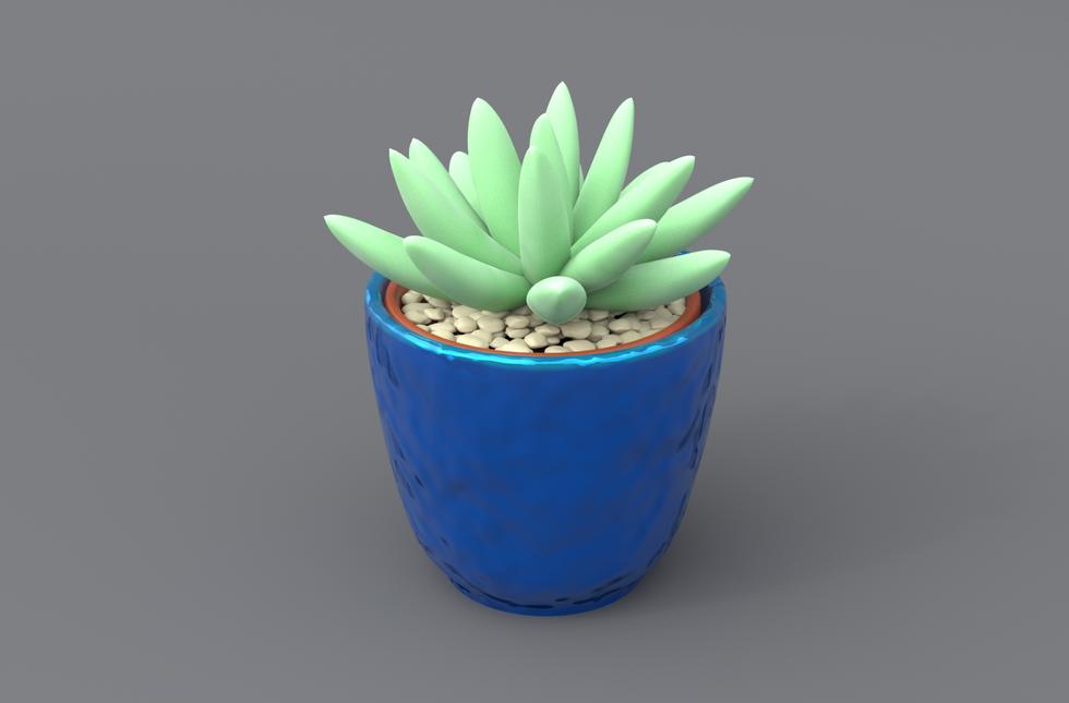 Succulent5.png
