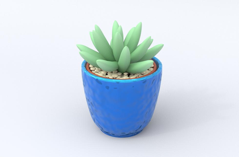 Succulent3.png