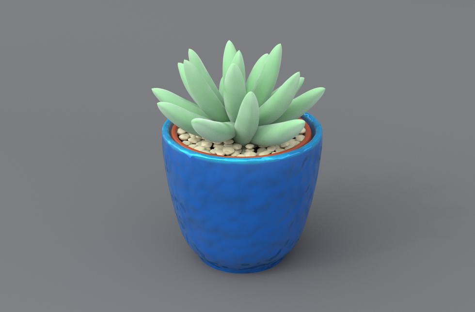 Succulent4.png