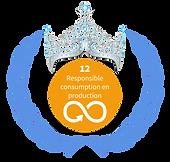 B SDG 12.png