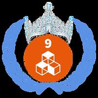 B SDG 9.png