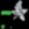 RCA_BG_Platinum[3][2].png