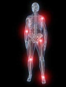 Skeleton Joints Diagram