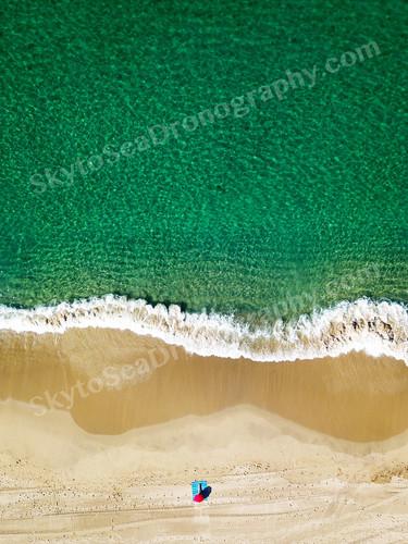 Sunbathing at the emerald oceanWM.jpg