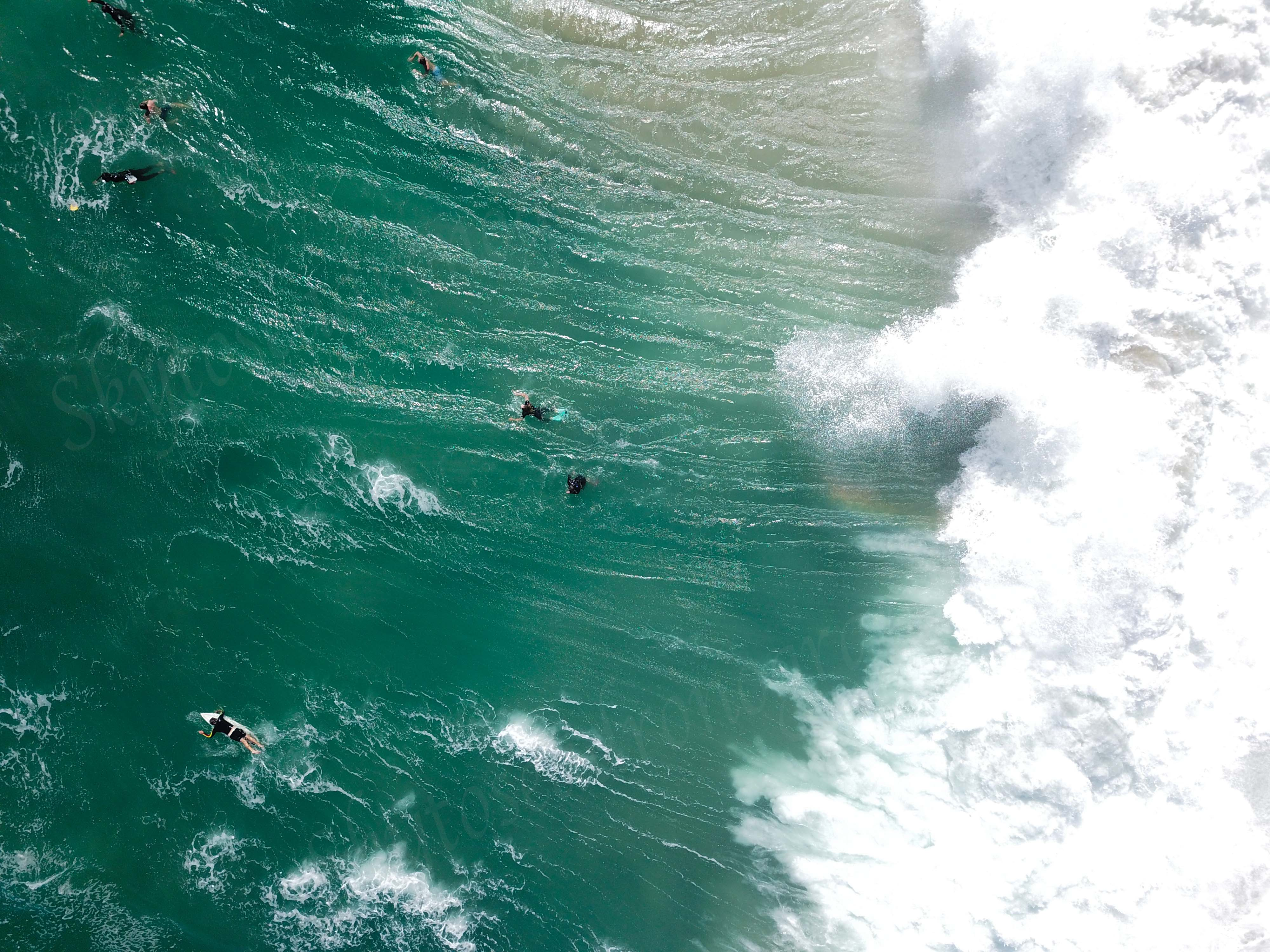 Intense wave The Wedge
