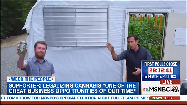 Humboldt Cannabis Tours founder on MSNBC national broadcast