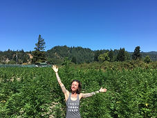 A person in a feild of cannabis